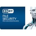 Obrázek ESET File Security for Linux/BSD; obnovení licence; počet licencí 1; platnost 1 rok